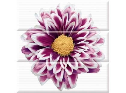 Absolut Keramika Aure Flowers Composicion Flower