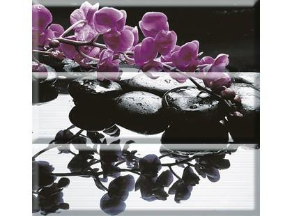Absolut Keramika Aure Purple Composicion Wellness Purple