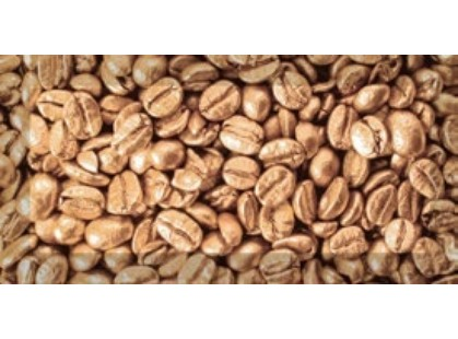 Absolut Keramika Coffee 10x20 Decor Beans 02