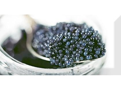 Absolut Keramika Monocolor 100х200 Biselado Decor Black Caviar 03