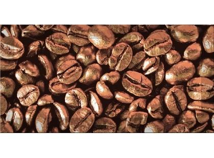 Absolut Keramika Monocolor 100х200 Biselado Decor Coffee Beans 03