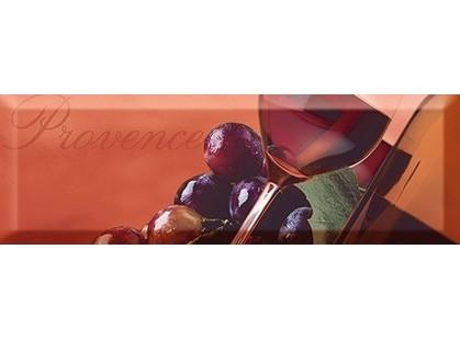 Absolut Keramika Wine 10x30 Wine 5B