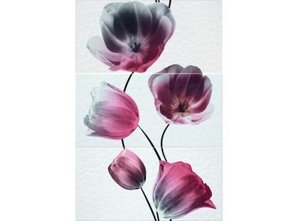 Aranda Vanity Dec. Vanity set. 3 (3 шт.)