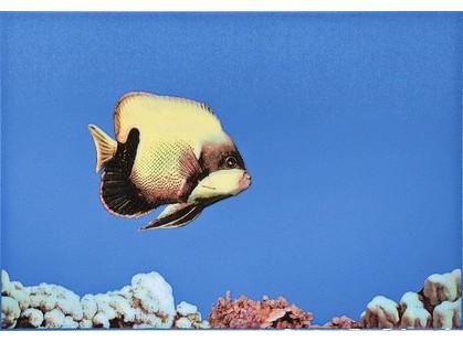 Атем Mono Fish 1
