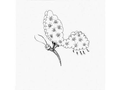 Bardelli Madama Butterfly BE20 (комплект, 7 из 12)