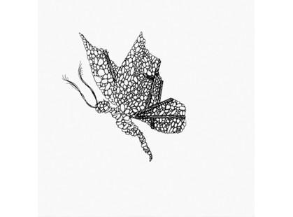 Bardelli Madama Butterfly BE20 (комплект, 9 из 12)