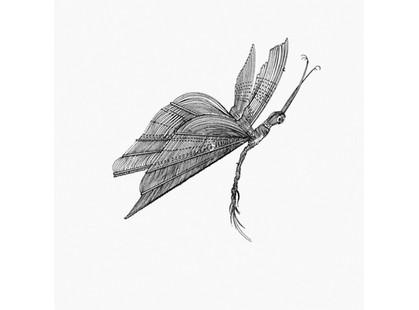 Bardelli Madama Butterfly L.111 (комплект, 12 из 12)