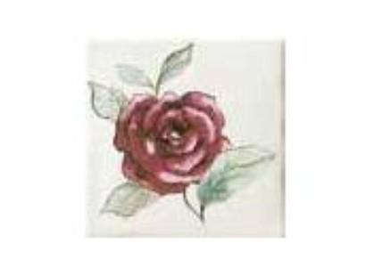 Bayker Memorie Ins. Jardin Rosa Bianco