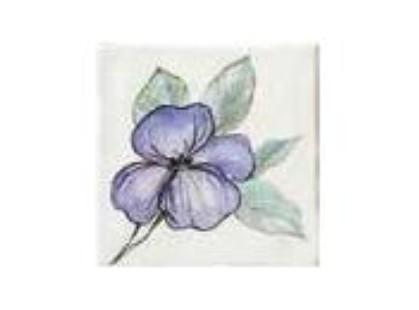 Bayker Memorie Ins. Jardin Viola Crema