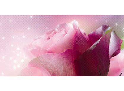 Belleza Ланком Розовый 10-05-41-619-1