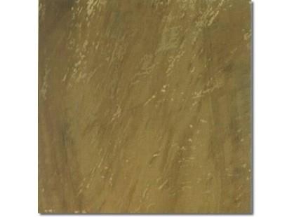 Brennero Golden eye Visone-2