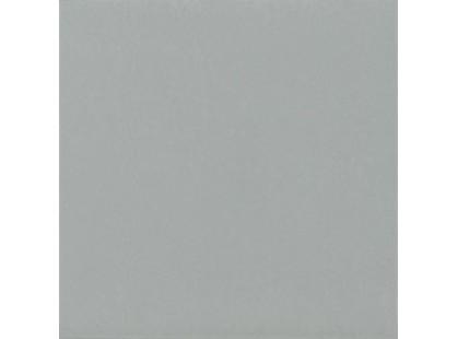 Caesar Solid Grey 60x60  Pol.