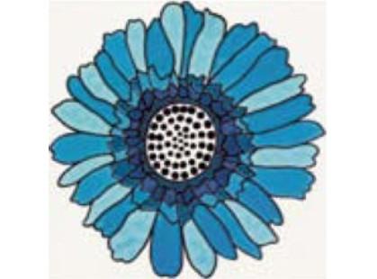 Cedir Absolute Daisy Blu Inserto 2