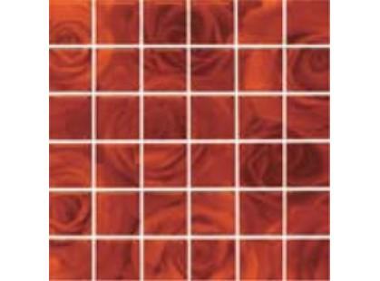 Cedir Absolute Rose Terra Formella