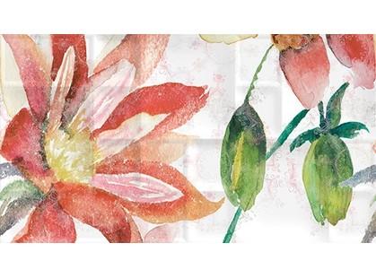 Ceradim Florance Dec Florance Panno B