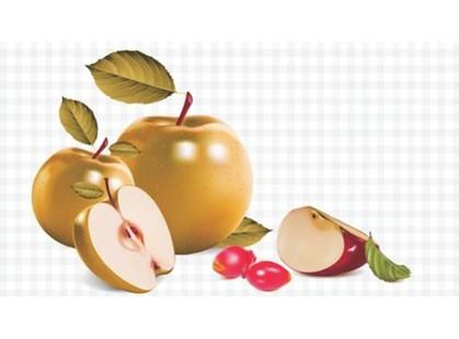 Ceradim Fruits Dec Fruits 3