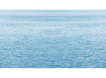 Ceradim Ocean Dec Regata 5