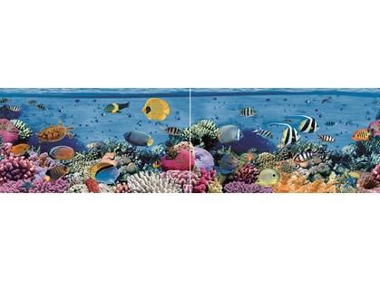 Ceradim Reef Dec Panno ( из 2-х шт)