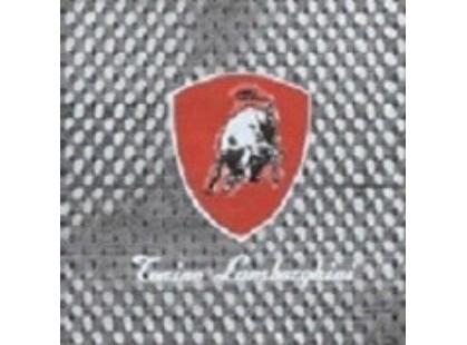 Ceramiche di siena Montecarlo TL Logo