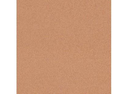 Cercom Design Evolution Gold