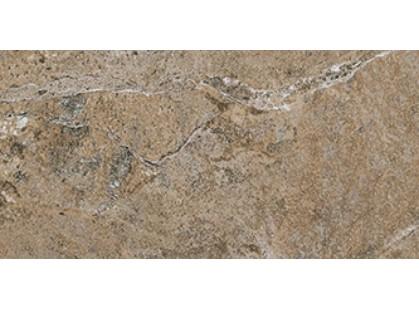 Cerdomus Dynasty 0060219 Forest-2