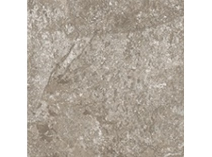 Cerdomus Dynasty 0060215 Grey-3