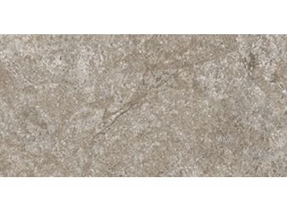 Cerdomus Dynasty 0060220 Grey-2