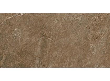 Cerdomus Dynasty 0060221 Rust-2
