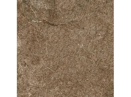 Cerdomus Dynasty 0060226 Rust