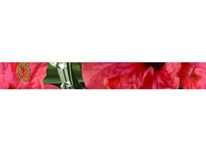 Cerrol Imperia Listwa Hibiskus