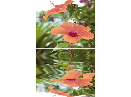 Cerrol Imperia Flora (комп х4)