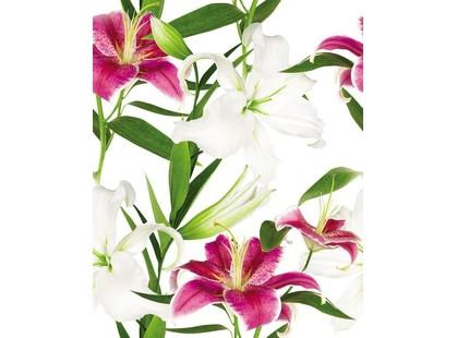 Cerrol Porto lilium Lilium (из 3пл)