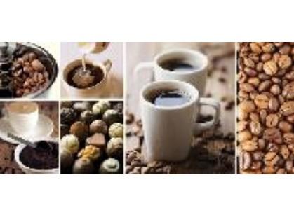 Cersanit Escada Многоцветный Coffee (ES2G011D)