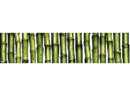 Cersanit Jungle Зелёный (C-JU1C021)