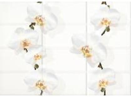 Cersanit Mono Светло-бежевый Цветы (MY2M301D)