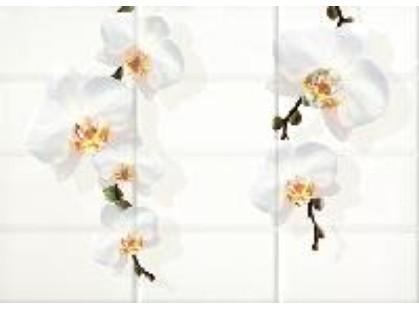 Cersanit Mono Светло-бежевый Цветы (MY2M302D)