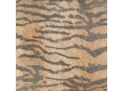 Cifre Animals Tiger