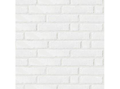 Serenissima Cir Underground White Line