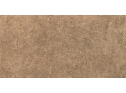 Coem Marfil Walnut 45x90-2