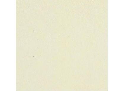 Coem Tinte Unite 11 Warm White