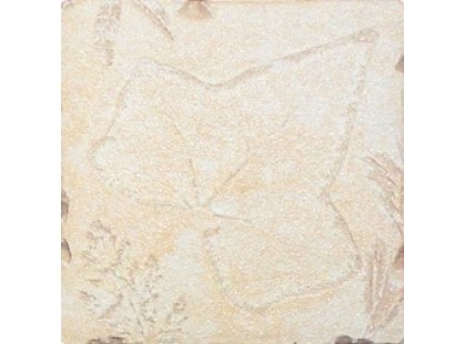 Decocer Pizarra Fosiles Beige-4