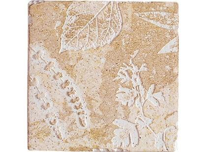 Decocer Pizarra Fosiles Ocre-2