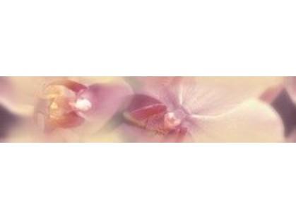 Дельта Керамика Blossom B200D183