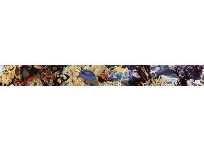 Дельта Керамика Ocean 20x50 Reef 2