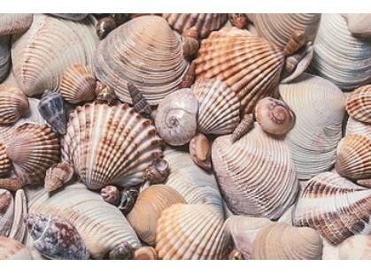 Дельта Керамика Seashore D1D173