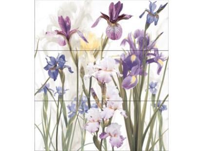 Dual Gres Iris Set