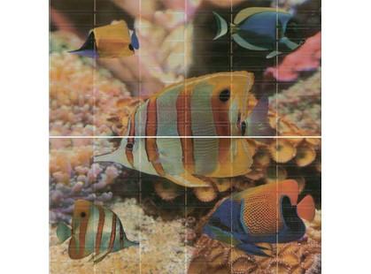El Molino Agata-Sunset Aquarium (п из 2-х шт)