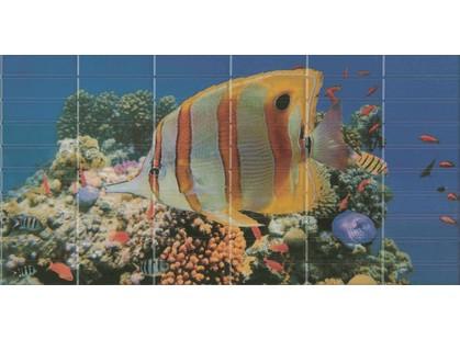 El Molino Agata-Sunset Décor 1 Aquarium (большая рыбка)