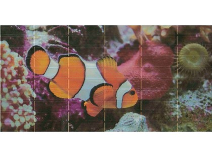 El Molino Agata-Sunset Décor 2 Aquarium (средняя рыбка)