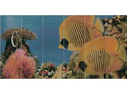 El Molino Agata-Sunset Décor 3 Aquarium (2 рыбки)